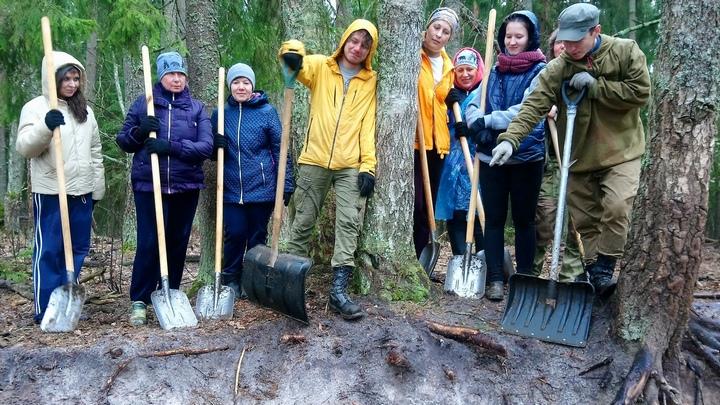 bryanskij les volontery