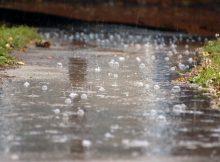 Брянцам в День города обещают дождь