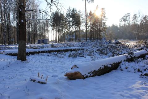 Park Klintsy2