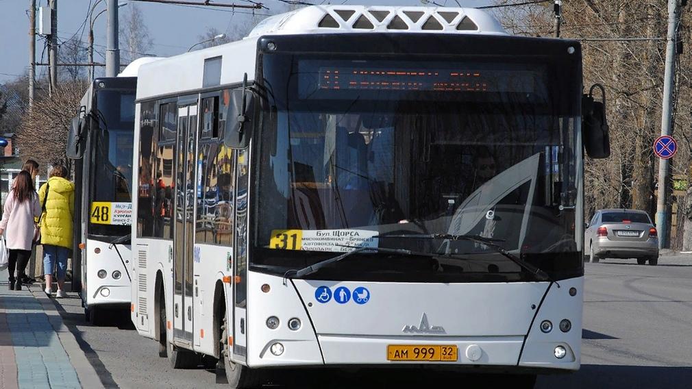 31 автобус изменит расписание движения