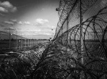 prison fence 219264 1920