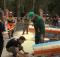 В Брянской области стартовал седьмой чемпионат региона среди вальщиков леса «Лесоруб 2021»