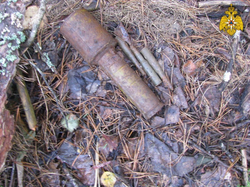 В поле под Дубровкой нашли гранату