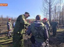 Брянский депутат Валуев вместе с волонтерами высадил в Якутии 50 сосен