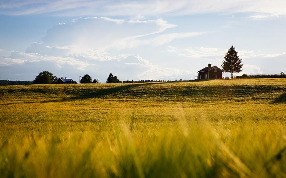 Брянцу без торгов передали в собственность три гектара земли в поселке в Бытошь