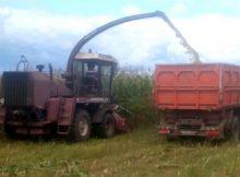 В Красногорском районе Брянщины завершается уборка урожая