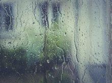 В единый день голосования брянцам обещают дождь и сильный ветер