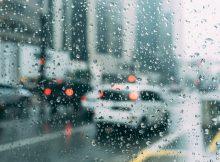 На Брянщине в субботу ожидается дождь и +11ºC