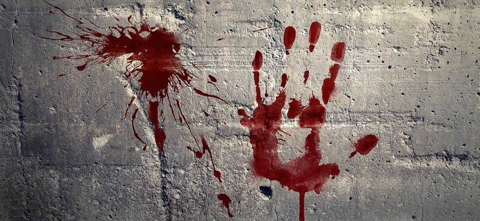 Брянец получил 9 лет строгача за жестокое убийство матери