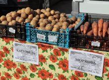 В Брянске на ярмарке выходного дня продали 65 тонн овощей и фруктов