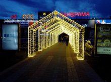 На Брянщине из-за коронавируса закроют кафе и торговые центры