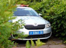 На Брянщине за неделю пьяными поймали 60 водителей и 70 пешеходов