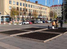 Брянск весной украсят 80 тысяч тюльпанов