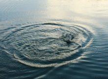 В Стародубе из озера Совхозное подняли тело 45-летнего мужчины